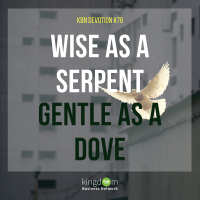 Wise as a Serpent, Gentle as a Dove